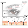 how eyelash growth serum works