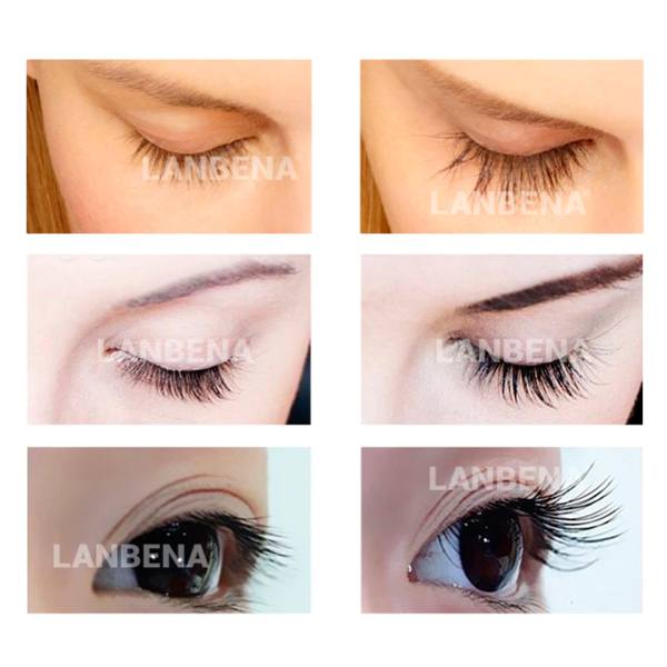 eyelash growth serum from lanbena