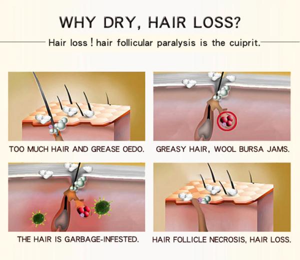 Morroco Hair Care Essence working