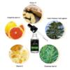 ingredient of beard growth oil