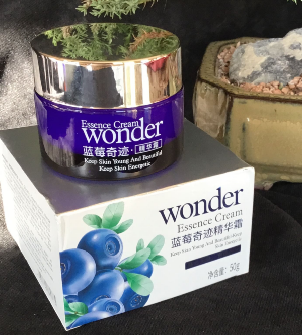 wonder blueberry day cream review