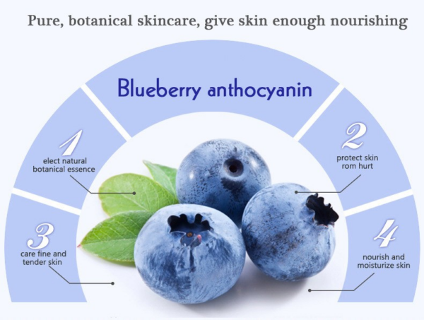 wonder blueberry day cream benefits